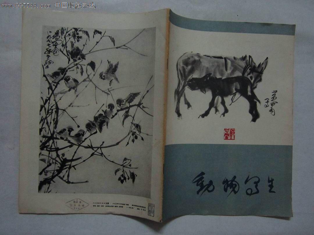动物写生_第3张_7788收藏__中国收藏热线
