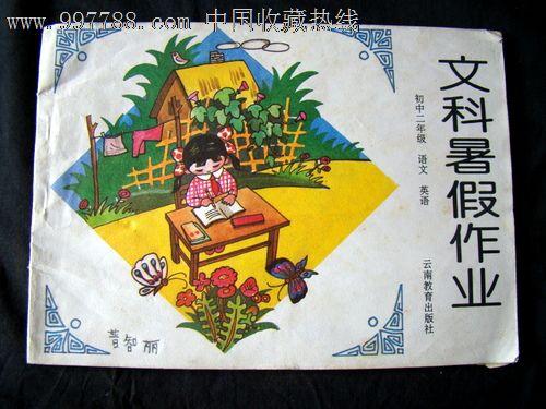 绘画暑假v绘画(封面二初中)文科初中庄里富平镇年级党保卫图片