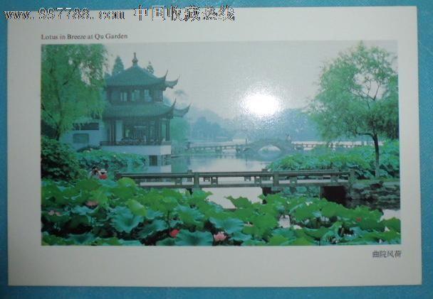杭州西湖—曲院风荷
