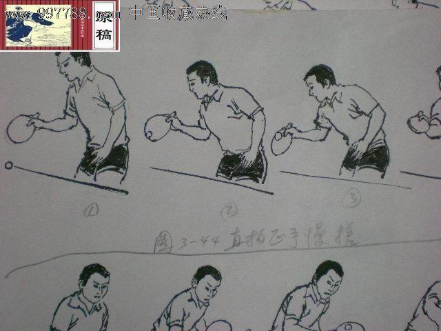《乒乓球削球技术与打法》手绘插图原稿近百幅数十张如图