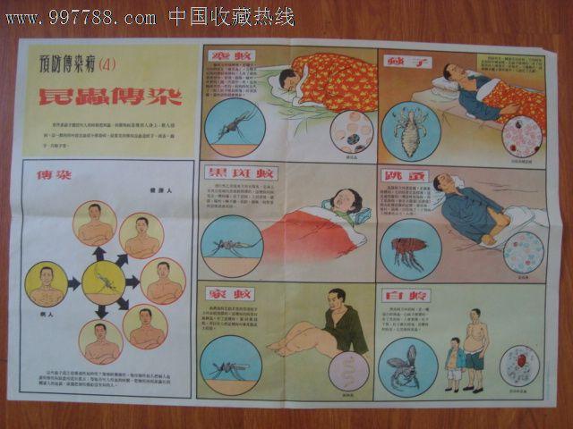 年代2开老卫生宣传画预防传染病 昆虫传染