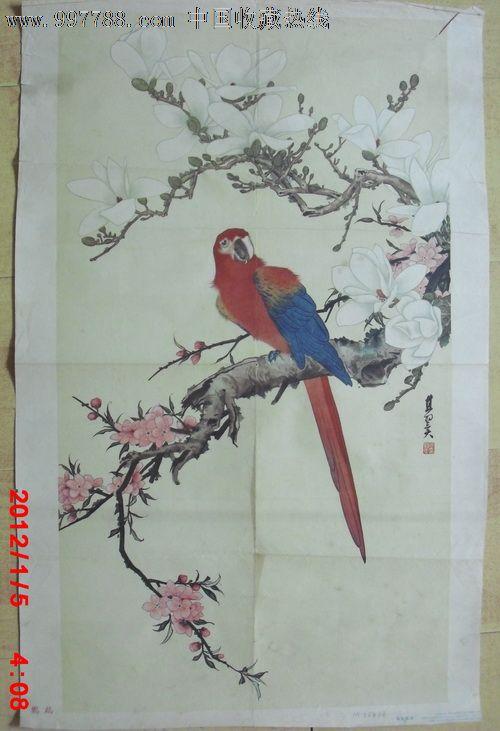 国画鹦鹉画法步骤
