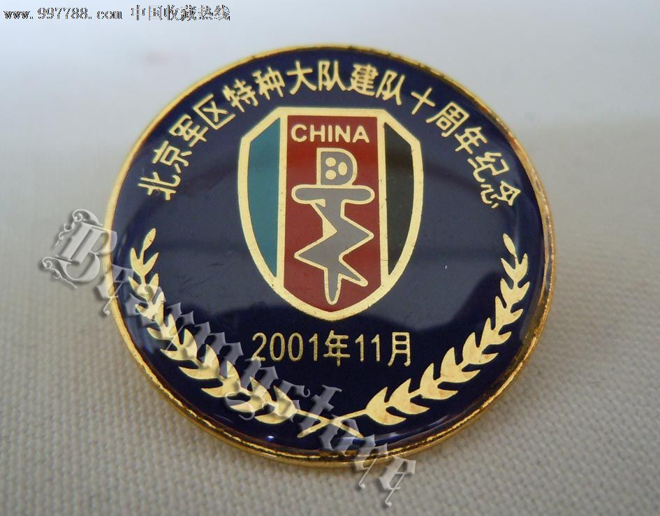 北京特种大队成立10周年纪念章