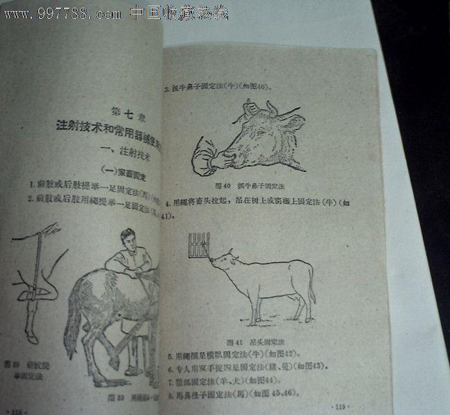 乡村兽医登记�y�-��+_农村兽医技术