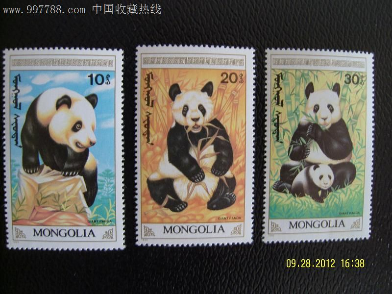 熊猫基地 风景戳 成都
