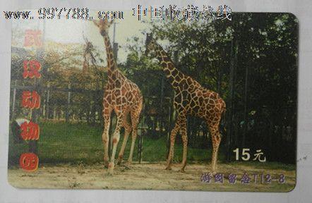 武汉动物园门券