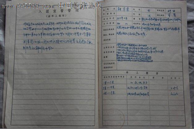 入团志愿书-申请书/函--se14121371-零售-7788收藏图片