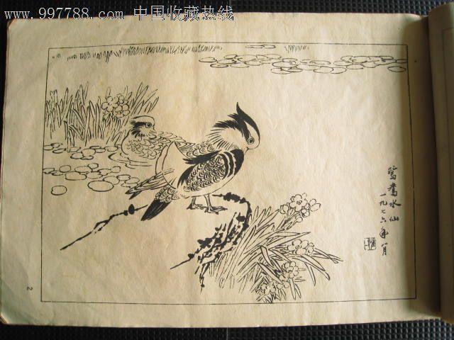 花鸟动物山水白描画册3册(长沙五美)【江宁老才】_第4张_7788收藏