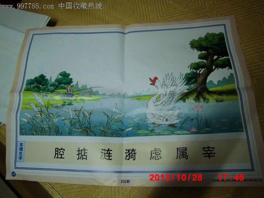 义务教育课程标准实验教科书语文四年级上册挂图13:白公鹅【书海寻欢