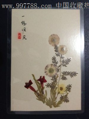 手工制作植物标本【一路顺风】-se14402078-树叶/植物