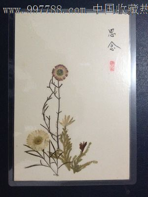 手工制作植物标本【思念】_树叶/植物标本_蜀乡书院