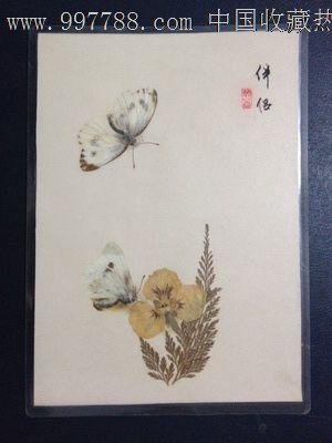 手工制作动植物标本【伴侣】_树叶/植物标本_蜀乡书院