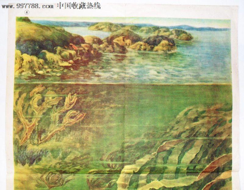 【珍宝岛艺术品收藏店】_第3张_7788收藏__中国收藏热线