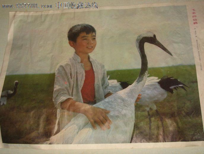 飞来的仙鹤_年画/宣传画_新心缘【7788收藏__中国收藏