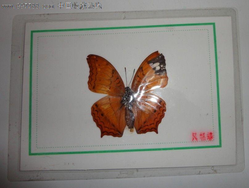四川大学动物标本馆