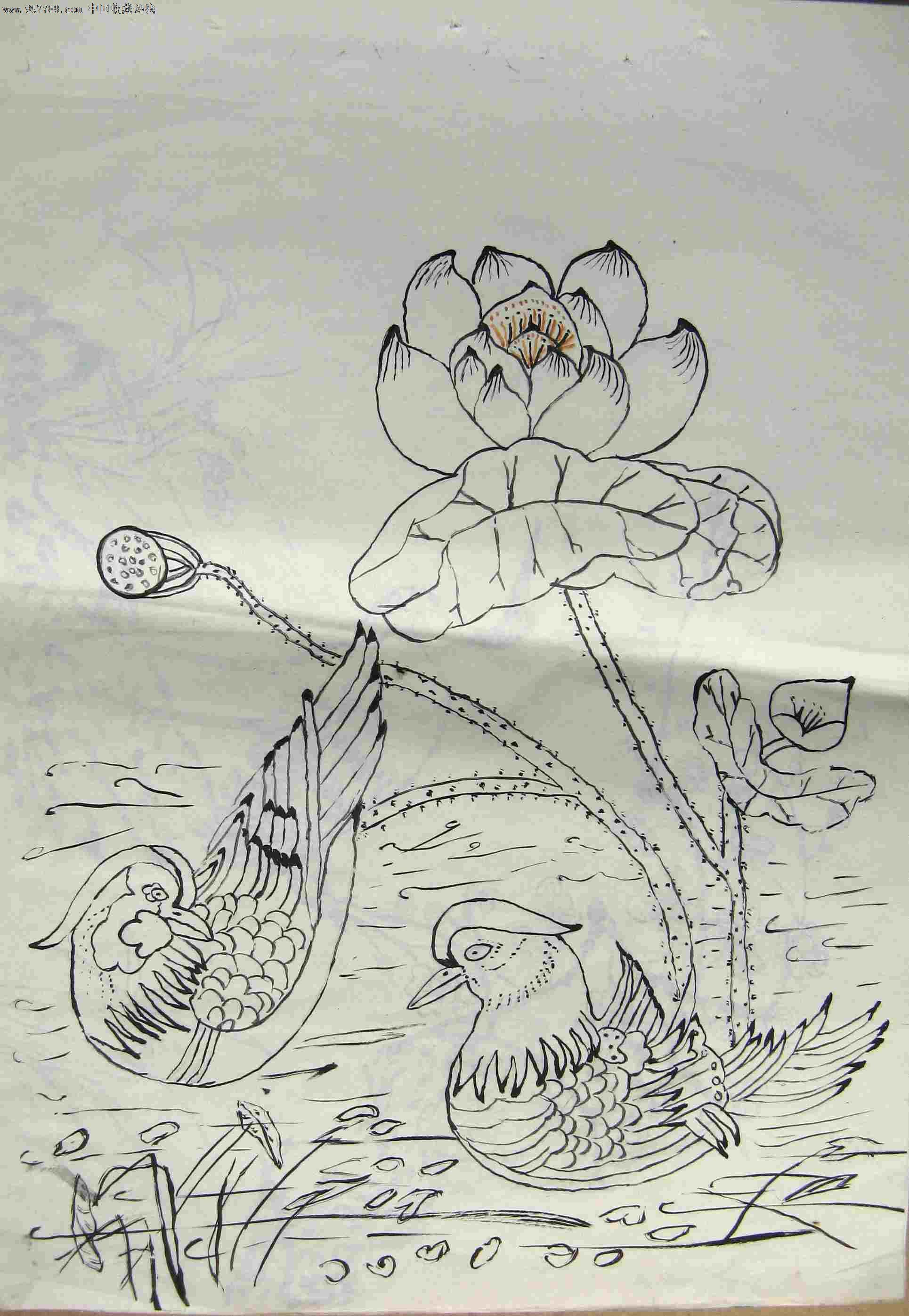 鸳鸯的画法简笔画