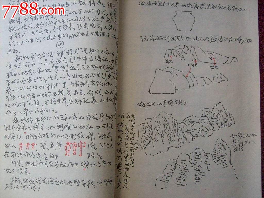黑白牡丹花纹身手稿