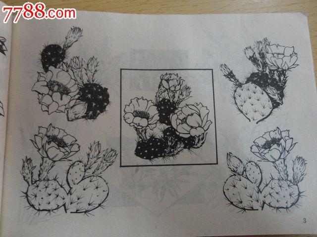 实用花卉图案 以花卉设计为主的黑白图案集,在写生的基础上进行了变