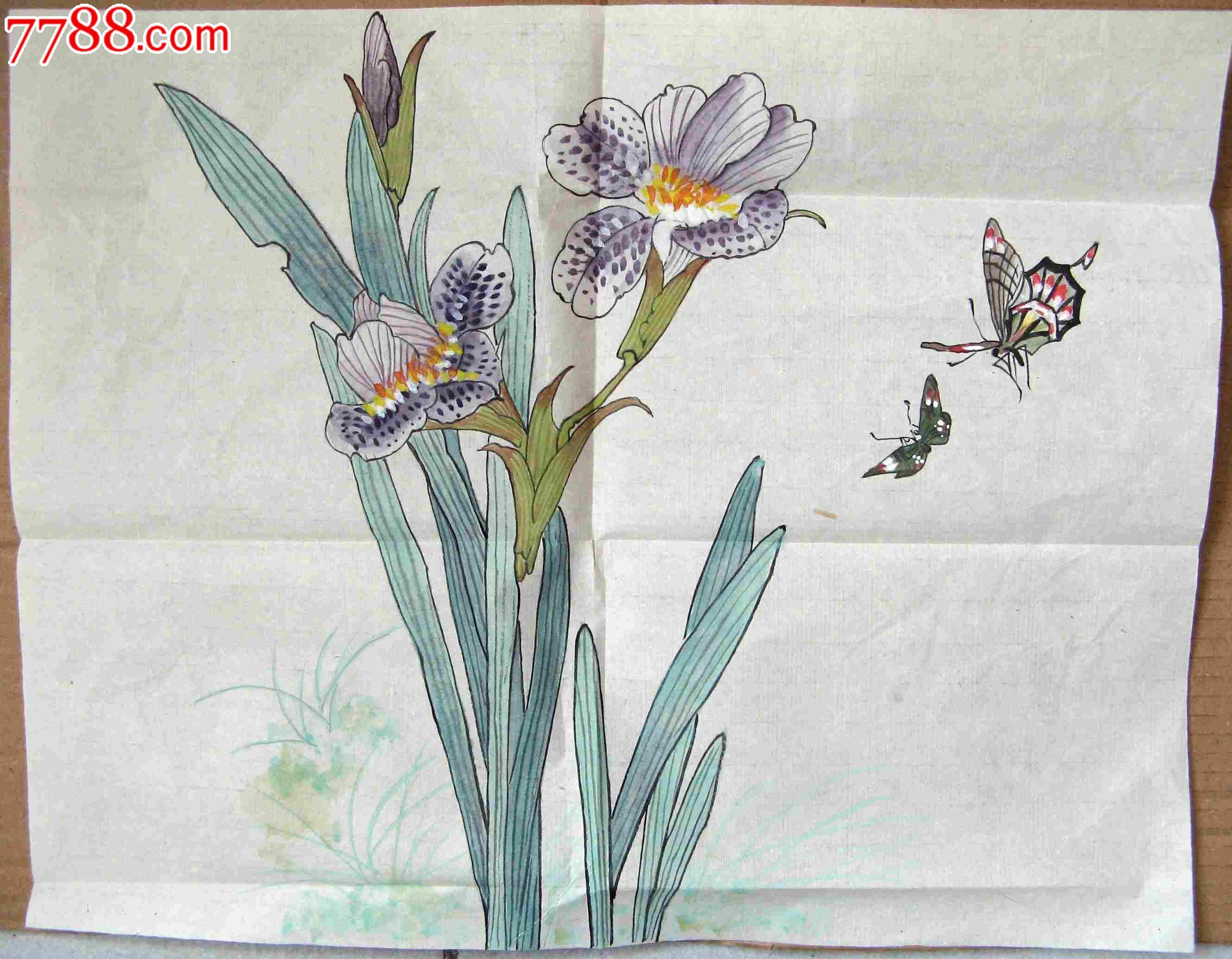 画得漂亮的尺半横幅兰花蝴蝶画