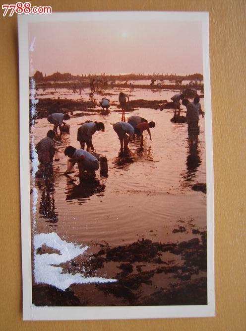 秦皇岛沙滩彩色照片