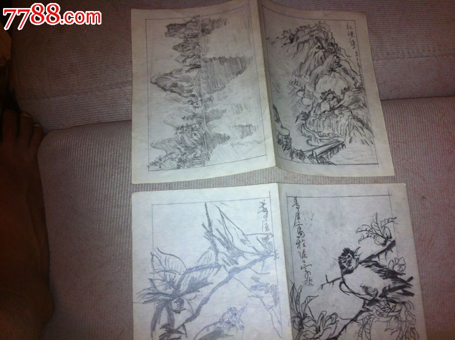 铅笔素描画2张-花鸟国画原作--se18054044-零售-7788