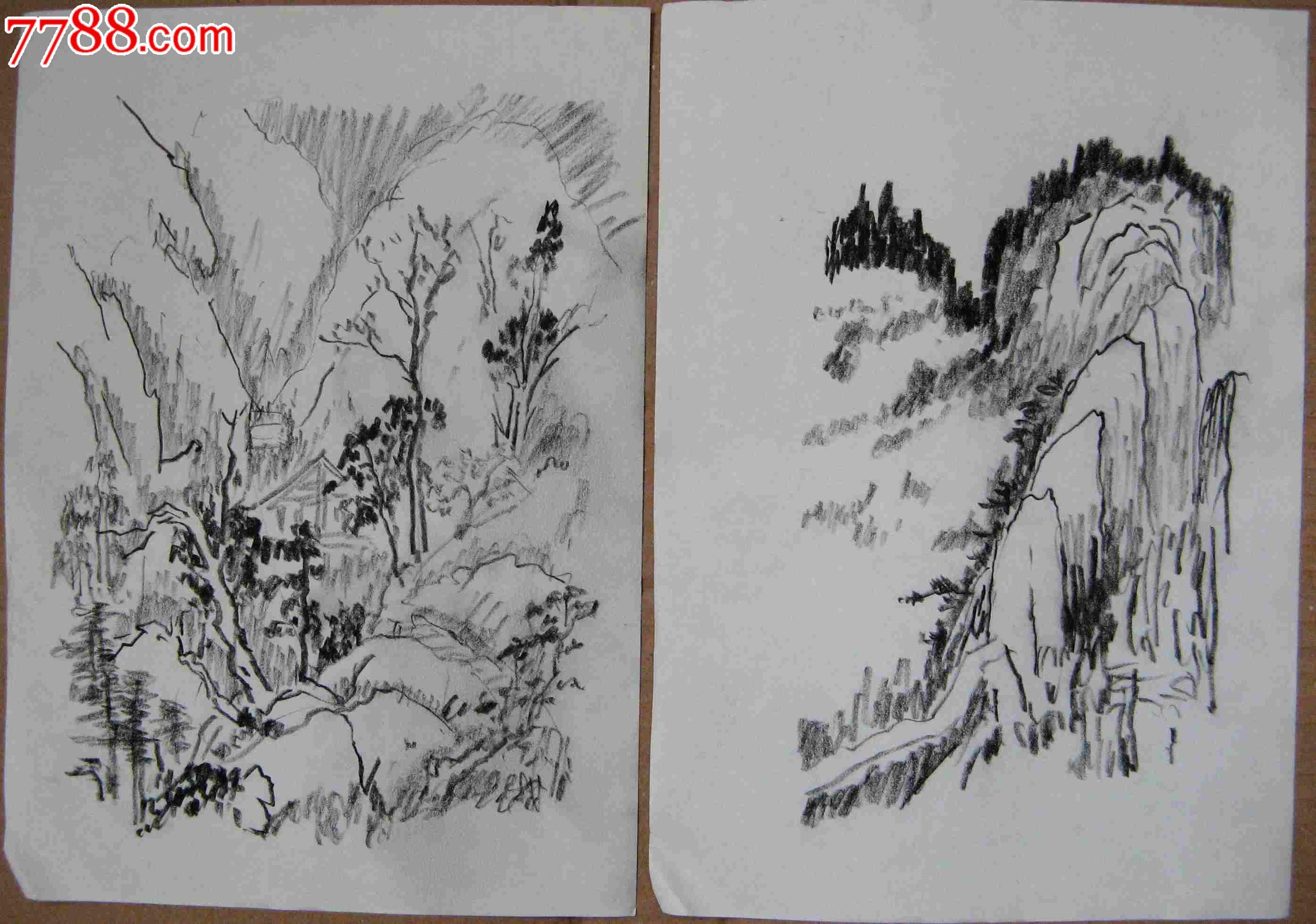 铅笔手绘竹子和山水