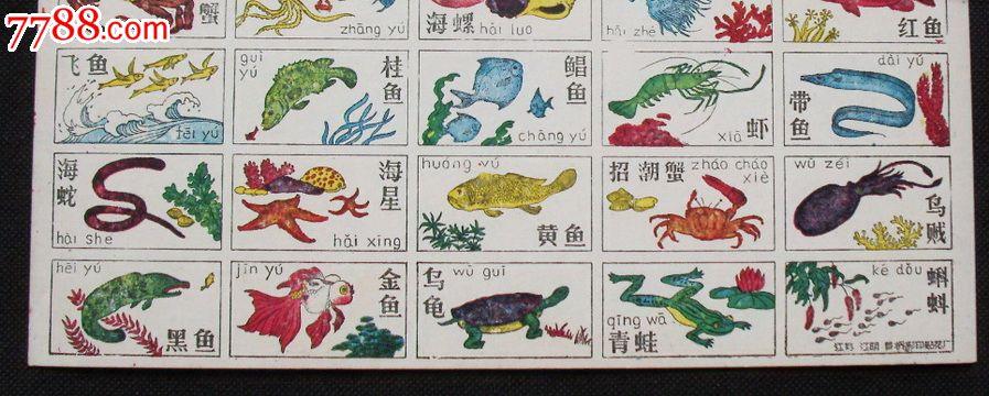 看图识字猜谜语【水生动物】