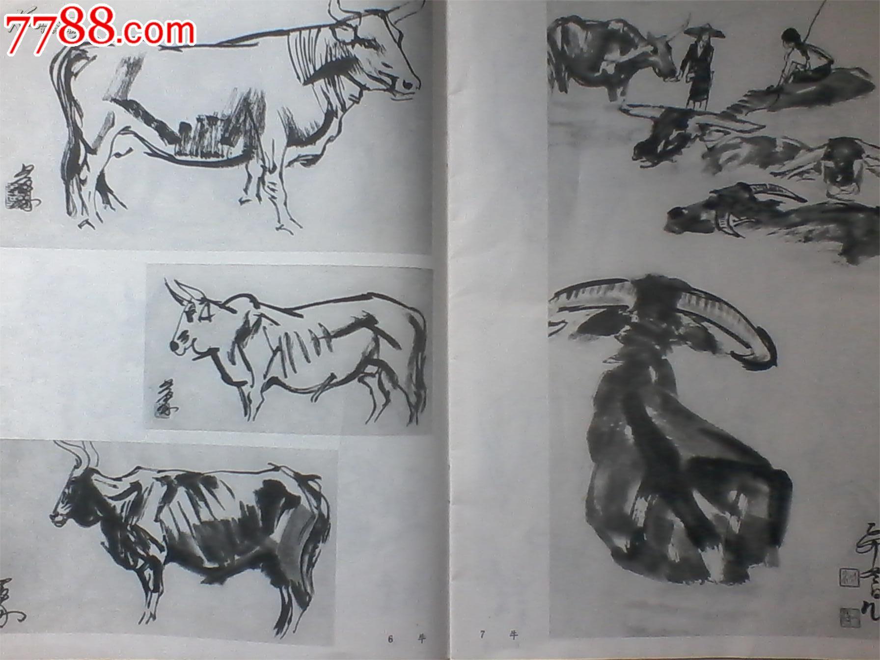 动物写生【1978年10月1版1印】