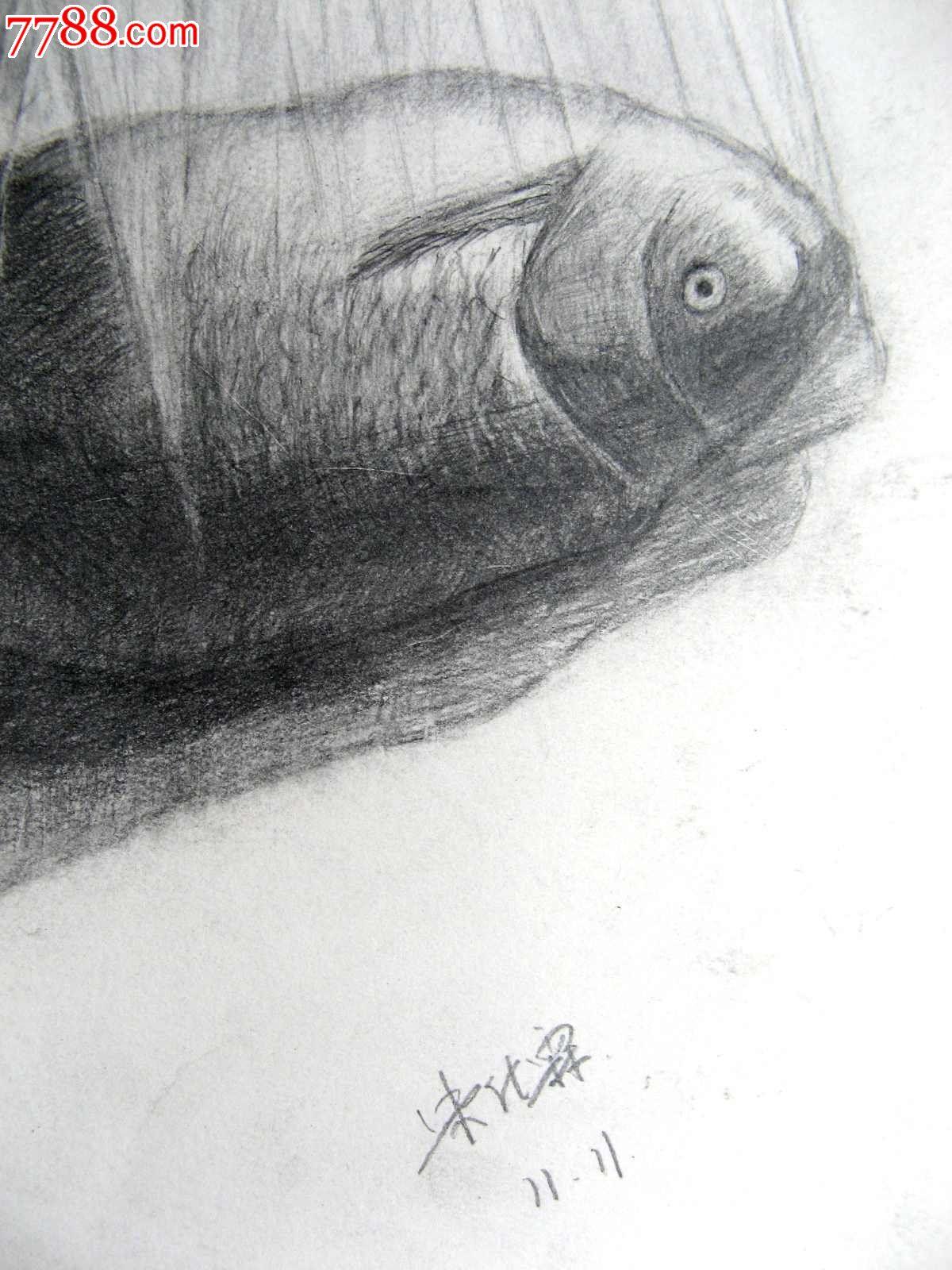 铅笔素描画:塑料袋里的鱼_议价_第2张_7788收藏__中国收藏热线