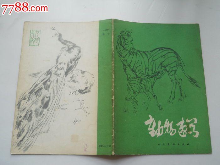 动物速写_素描/速写画册【藏之家】_第1张_7788画册网
