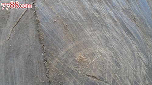 千年水浸铁木原木
