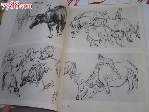 动物写生-价格:6元-se20918846-素描/速写画册