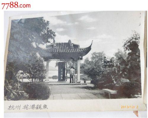 老風景照片上世紀6,70年代的杭州風景老照片