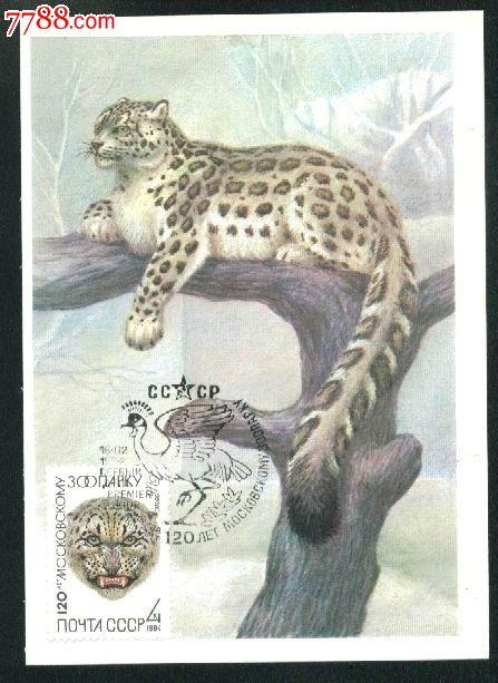 动物园----雪豹_价格26元【日通邮品】_第1张_7788收藏__中国收藏热线