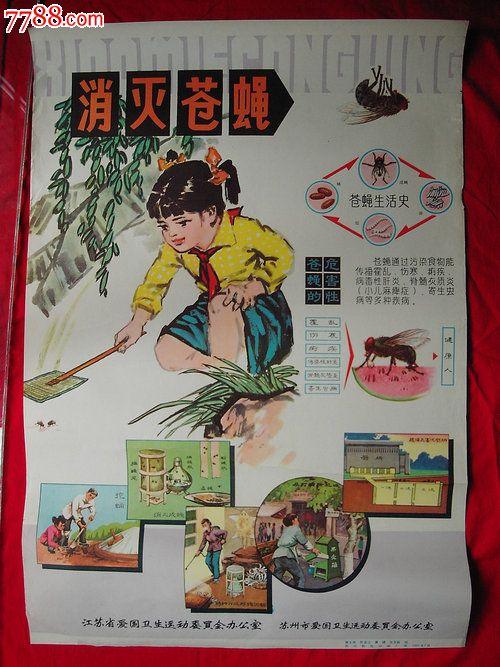 70-80年代卫生宣传画---消灭苍蝇_第1张_7788收藏__中国收藏热线