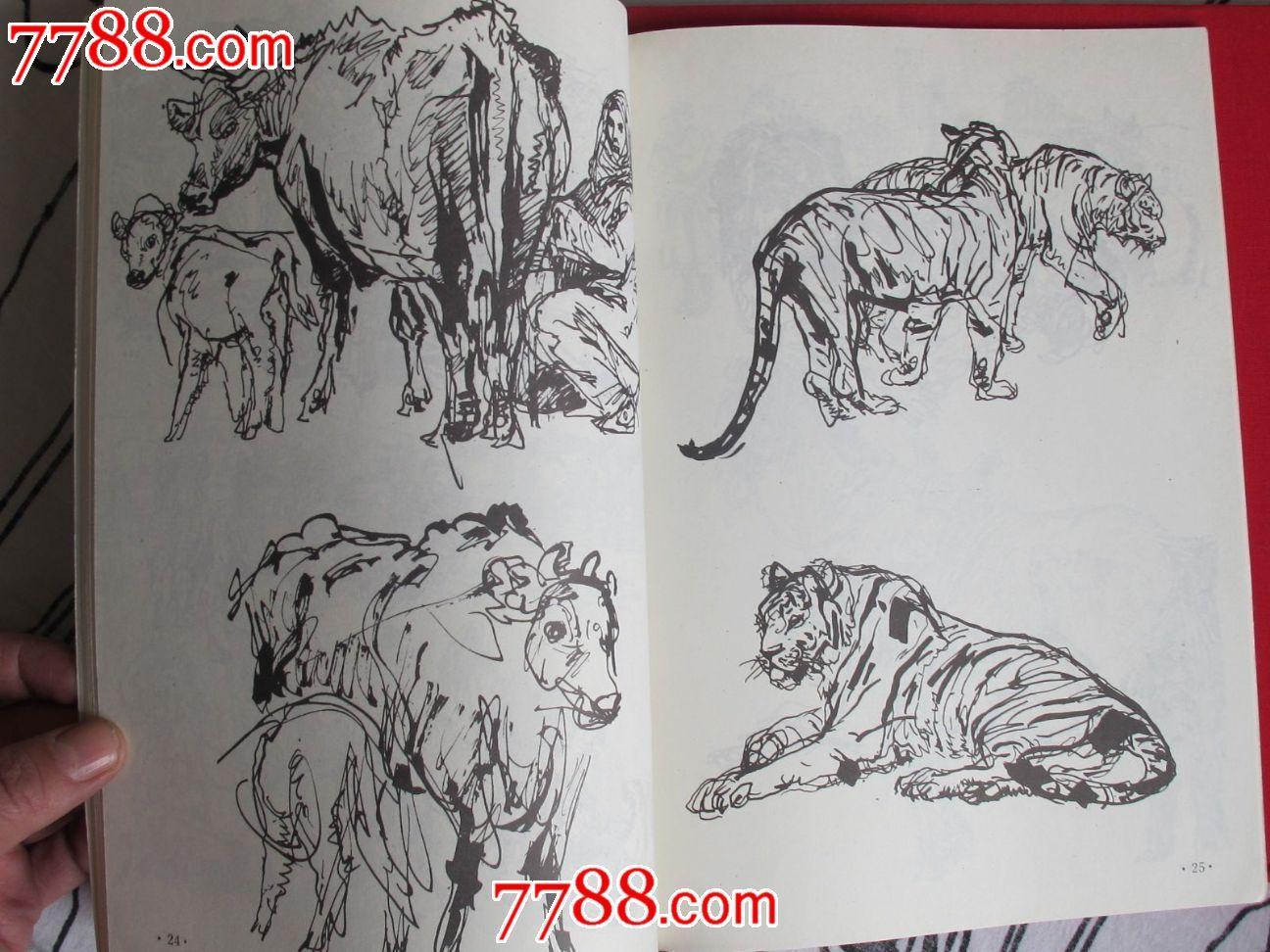 《动物速写》许勇著(许勇原鲁迅美术学院著名画家教授