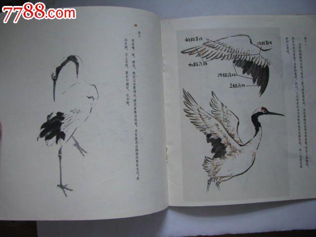 中国画技法入门/怎样画丹顶鹤/上海书画出版社编图片