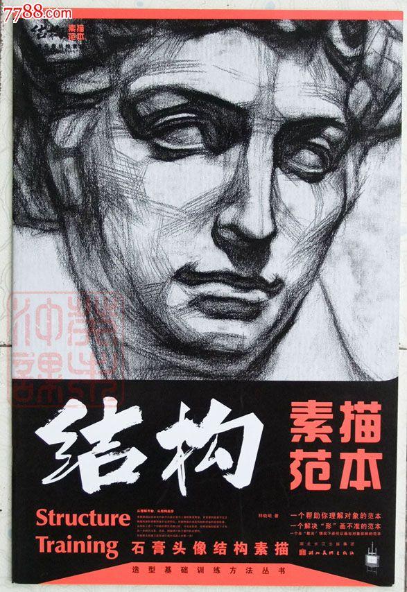 结构素描范本石膏头像结构素描林晓明湖北美术2006年