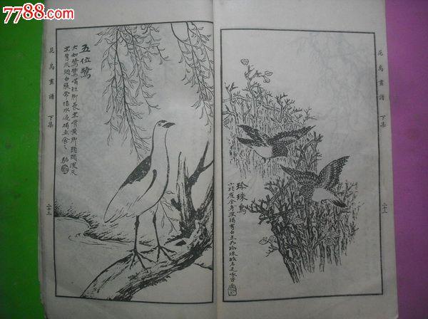 .马骀画宝.花鸟兽禽素描