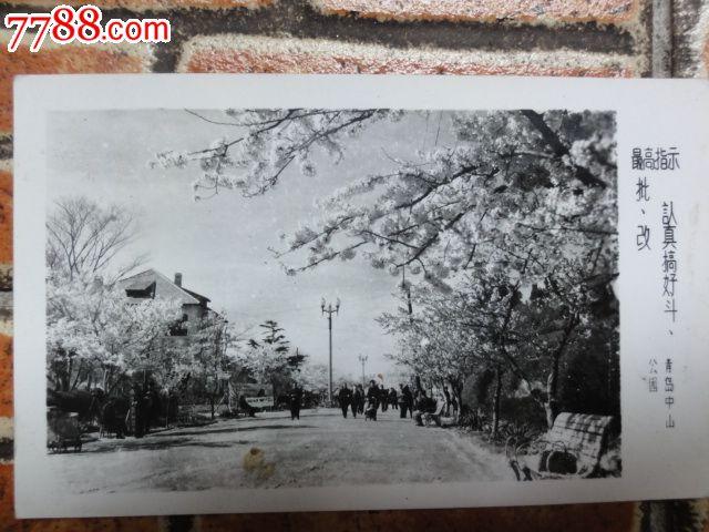 青岛中山公园_老照片_品鉴园【7788收藏__中国收藏