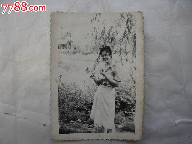 柳树手绘图黑白