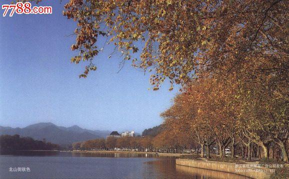 浙江杭州西湖北山街秋色《牡丹》片