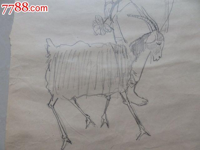 文革铅笔画····人物与羊
